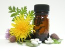 Read More on The Benefits of Homeopathy image