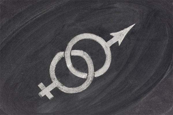 Feminism Balancing Male and Female