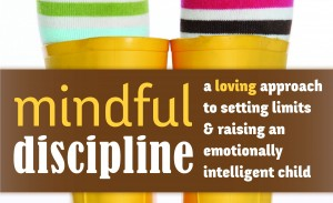 READ: Mindful Discipline: A Loving Approach to Setting Limits and Raising an Emotionally Intelligent Child