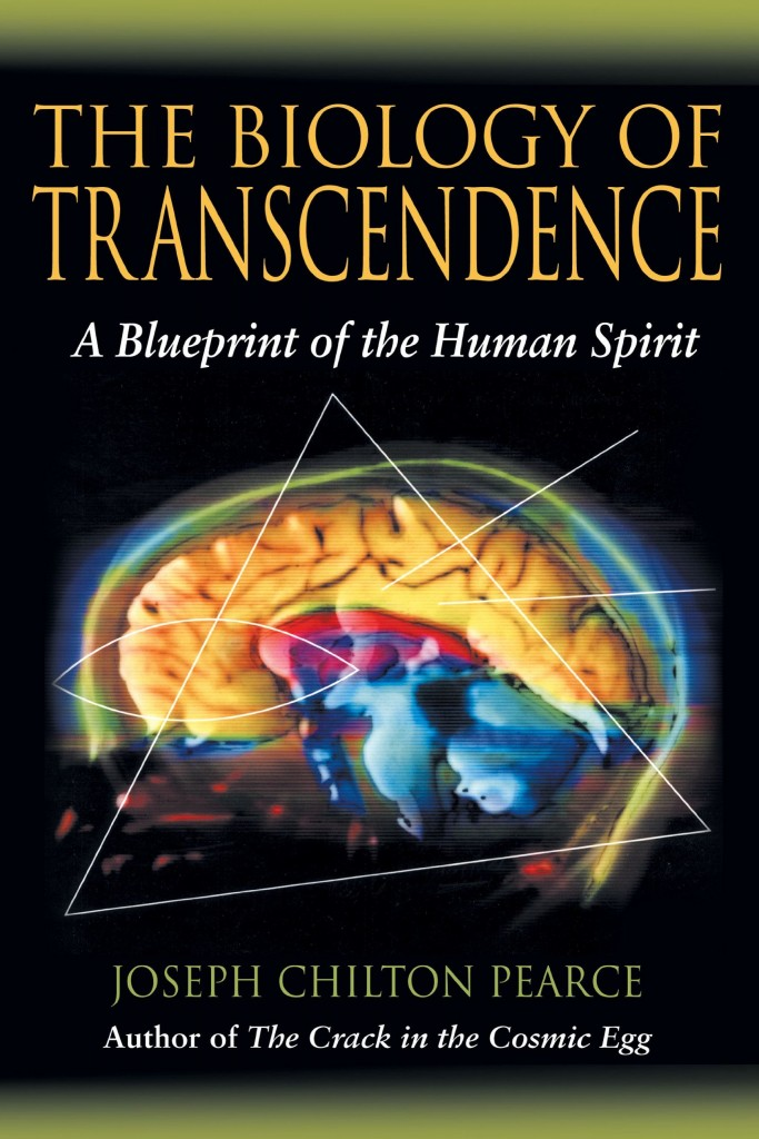 Biology of Transcendence Cover