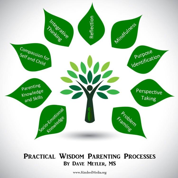 Practical Wisdom Parenting Processes